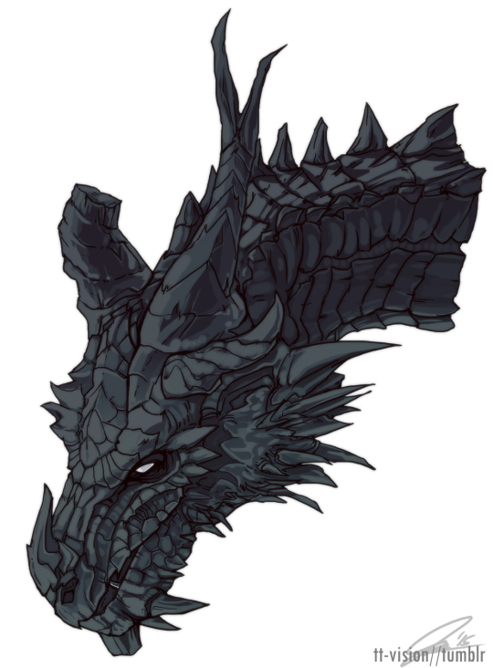 Schrodinger S Cat Is Skyrim Dragon Skyrim Art Dragon Artwork