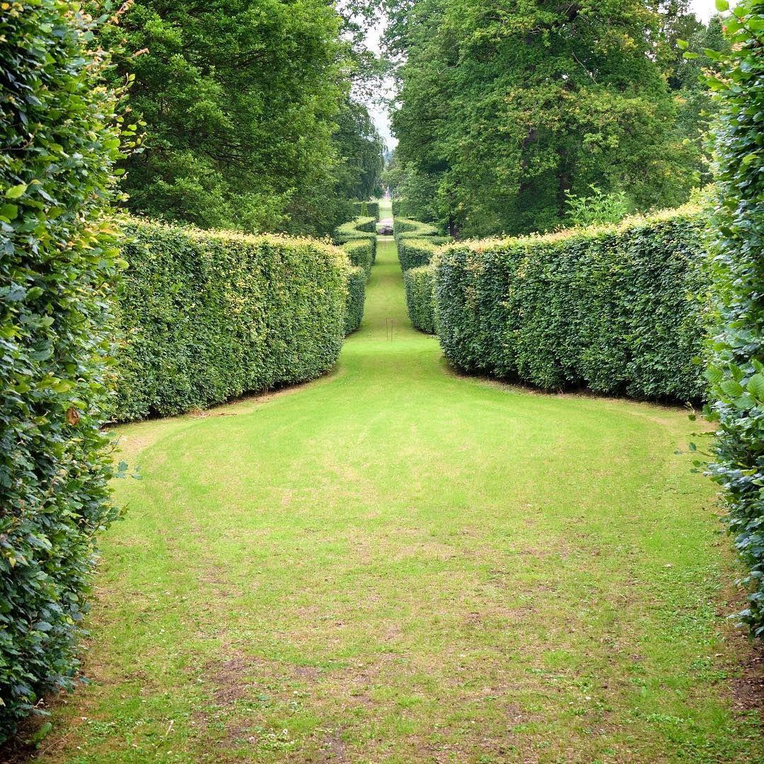 Landscape of house garden  IHaveThisThingWithHedgesChatsworth House Gardens Derbyshire