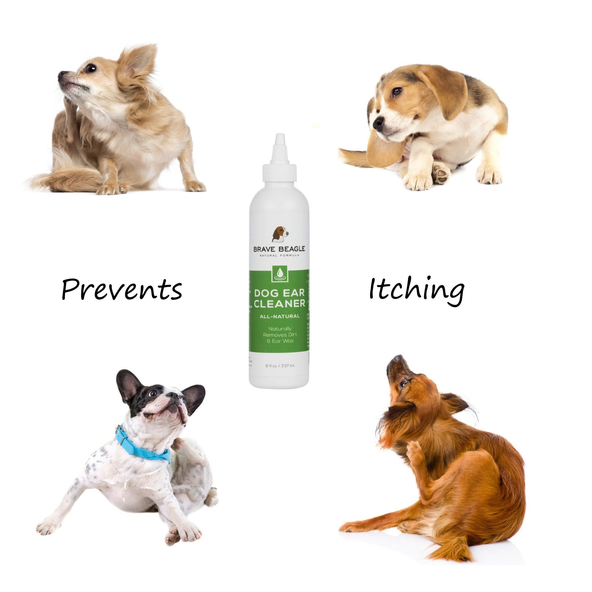 Itchy Pups Brave Beagle S All Natural Ear Cleaner Helps Prevent