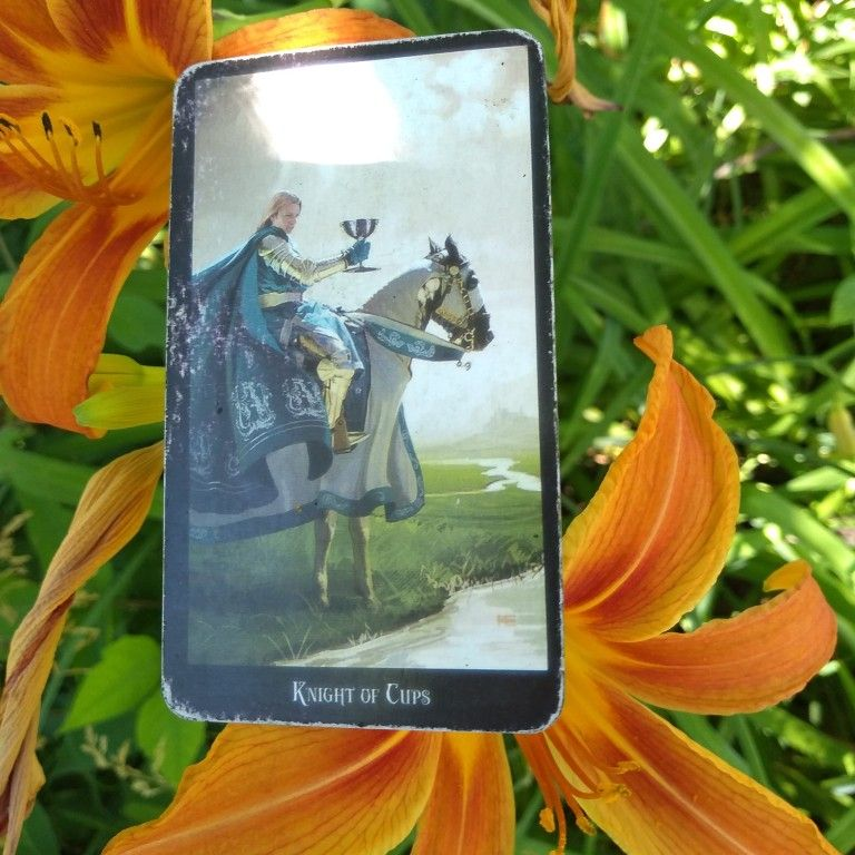 Daily pull card of the day in 2020 tarot reading cards