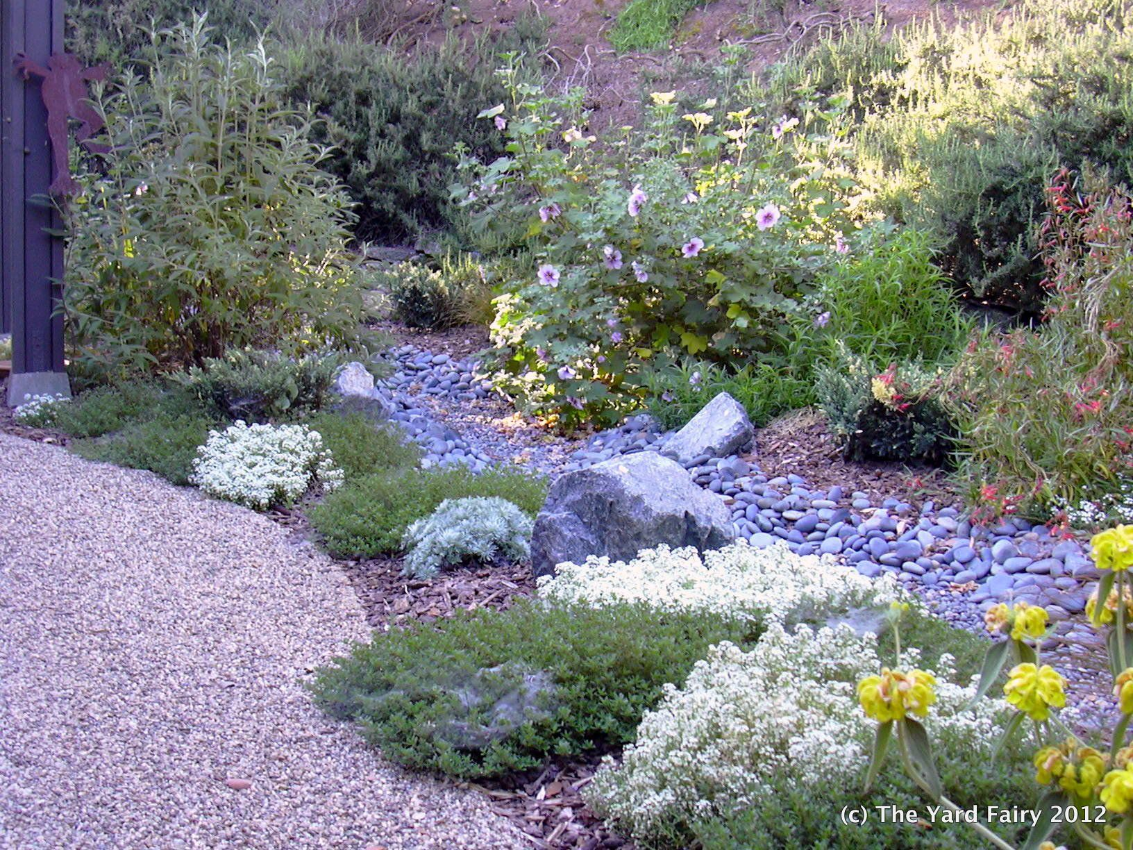Landscaping Ideas Northern California : Northern california xeriscape designs gallery