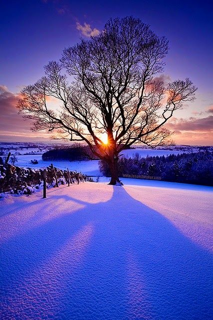 Gorgeous Winter Sunset