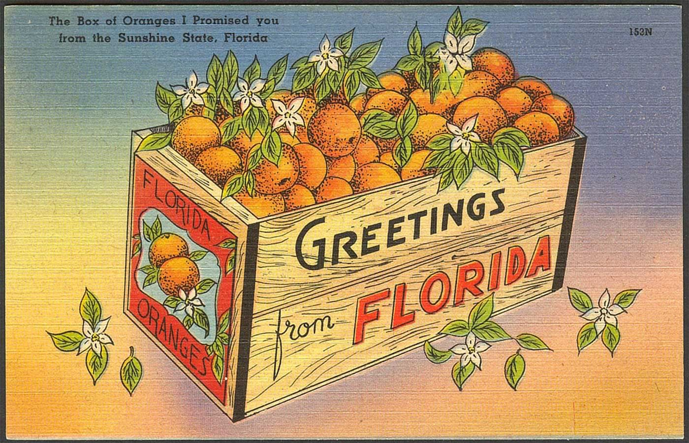 Greetings from florida old florida pinterest sunshine state greetings from florida kristyandbryce Image collections