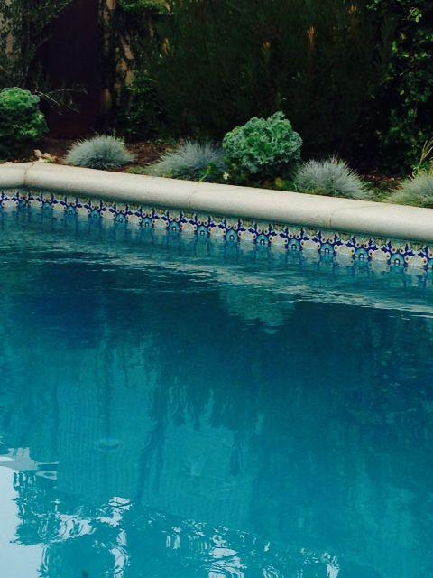 Molino Pattern For Pool Waterline Www Lascauxtile Net Swimming Pool House Pool Landscape Design Pool Tile
