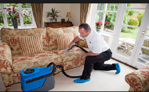 If You Want To Hire Expert Cleaners For The Professional Lawrence Upholstery Cleaning Services Then Furniture Upholstery Couch Upholstery Cleaning Upholstery