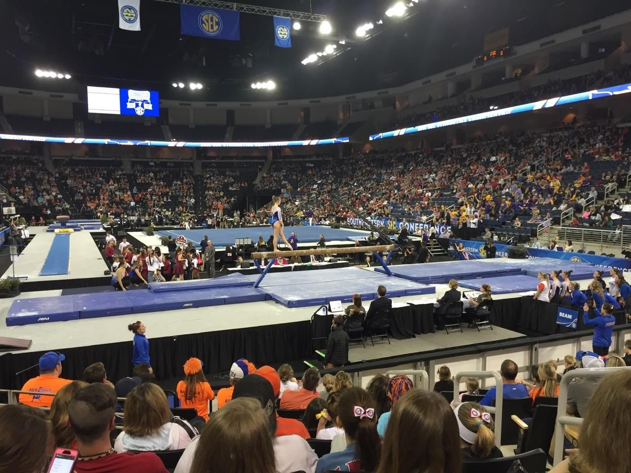 Amanda attended the 2015 SEC Gymnastics Championship this past weekend. Congratulations to the University of Alabama for coming in 1st!