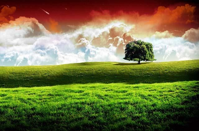 India Flag Colors In An Abstract Way Scenery Wallpaper Beautiful Nature Scenes Nature Scenes