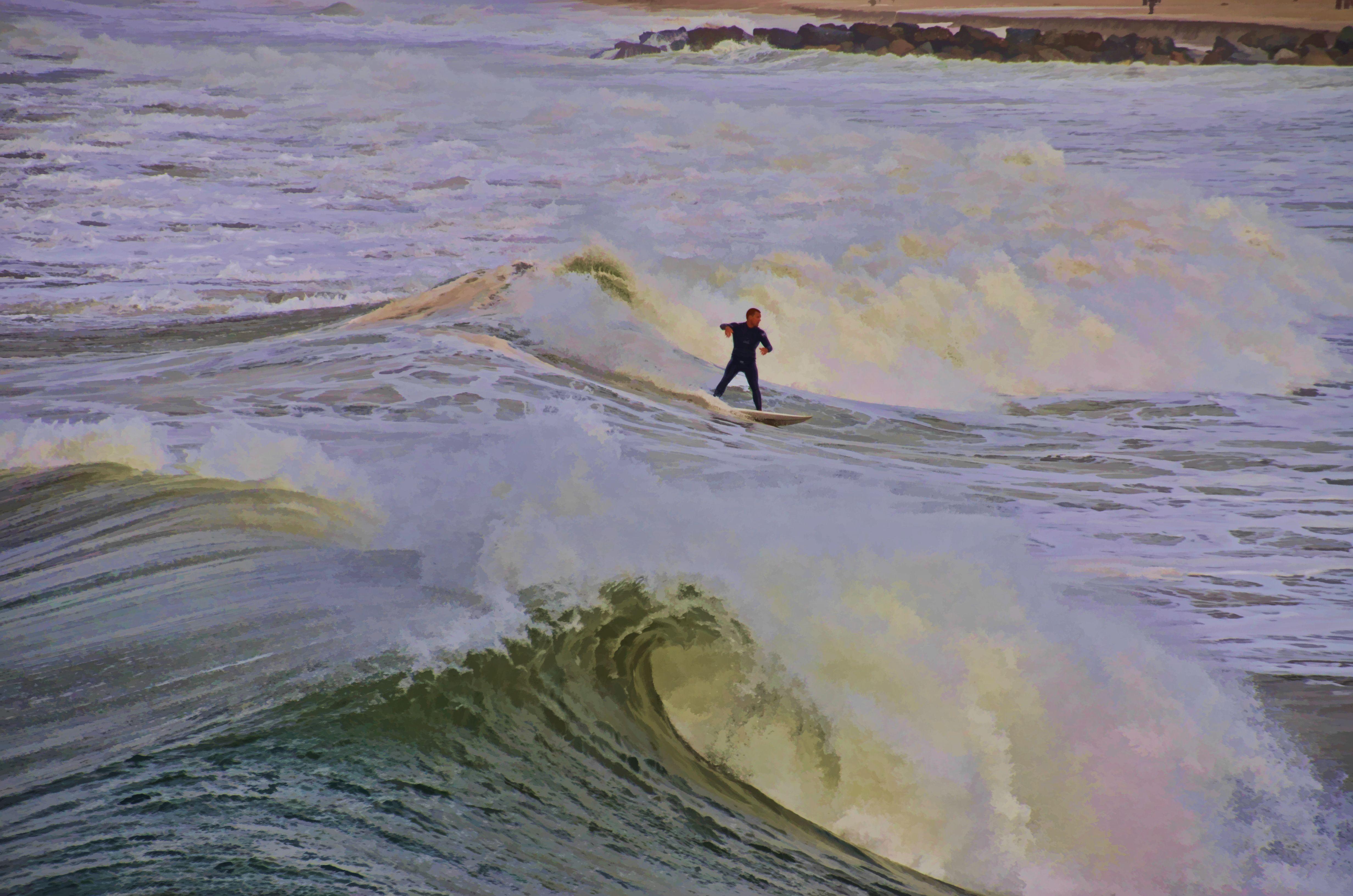Venice Surf Beach Ca
