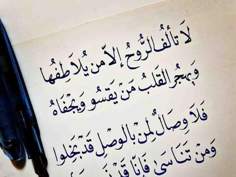 خلفيات حكم و أقوال فيسبوك لا تألف الروح إلا من يلاطفها Words Quotes Quotes For Book Lovers Arabic Love Quotes