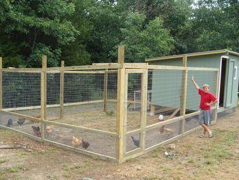 Overrun: How I made my chicken run predator-proof   Pet chickens ...