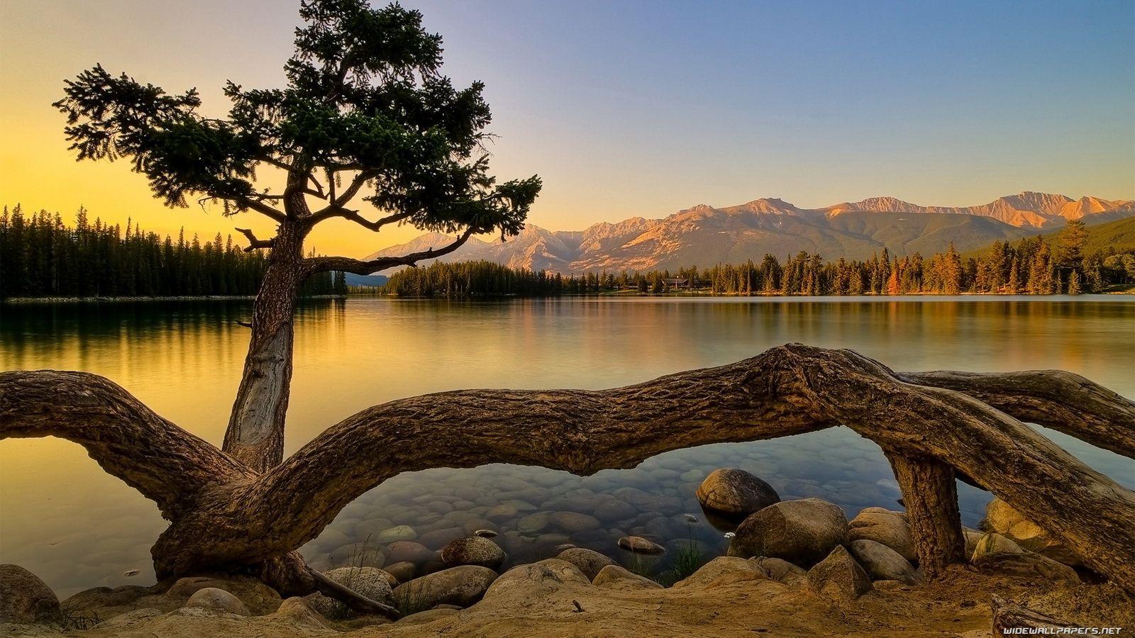 Free Nature Wallpaper Desktop Background Hd Nature Wallpapers Scenery Beautiful Nature