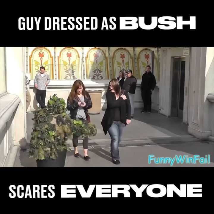 He dressed himself up as a bush and scared the sh*t out of everyone   By - The C...