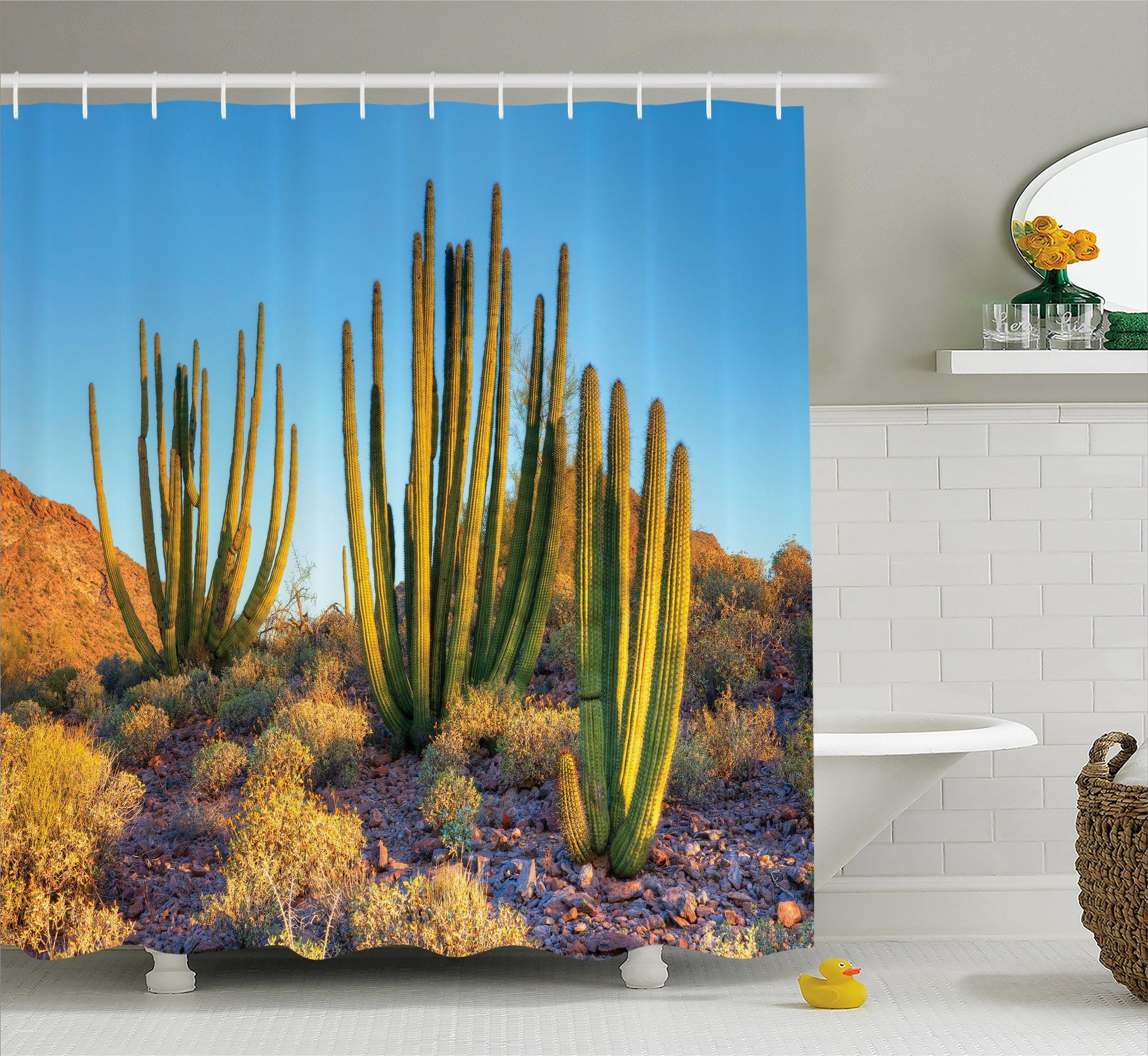 Avondale Photo of Nature Desert Cactus With Spikes and Mountains ...