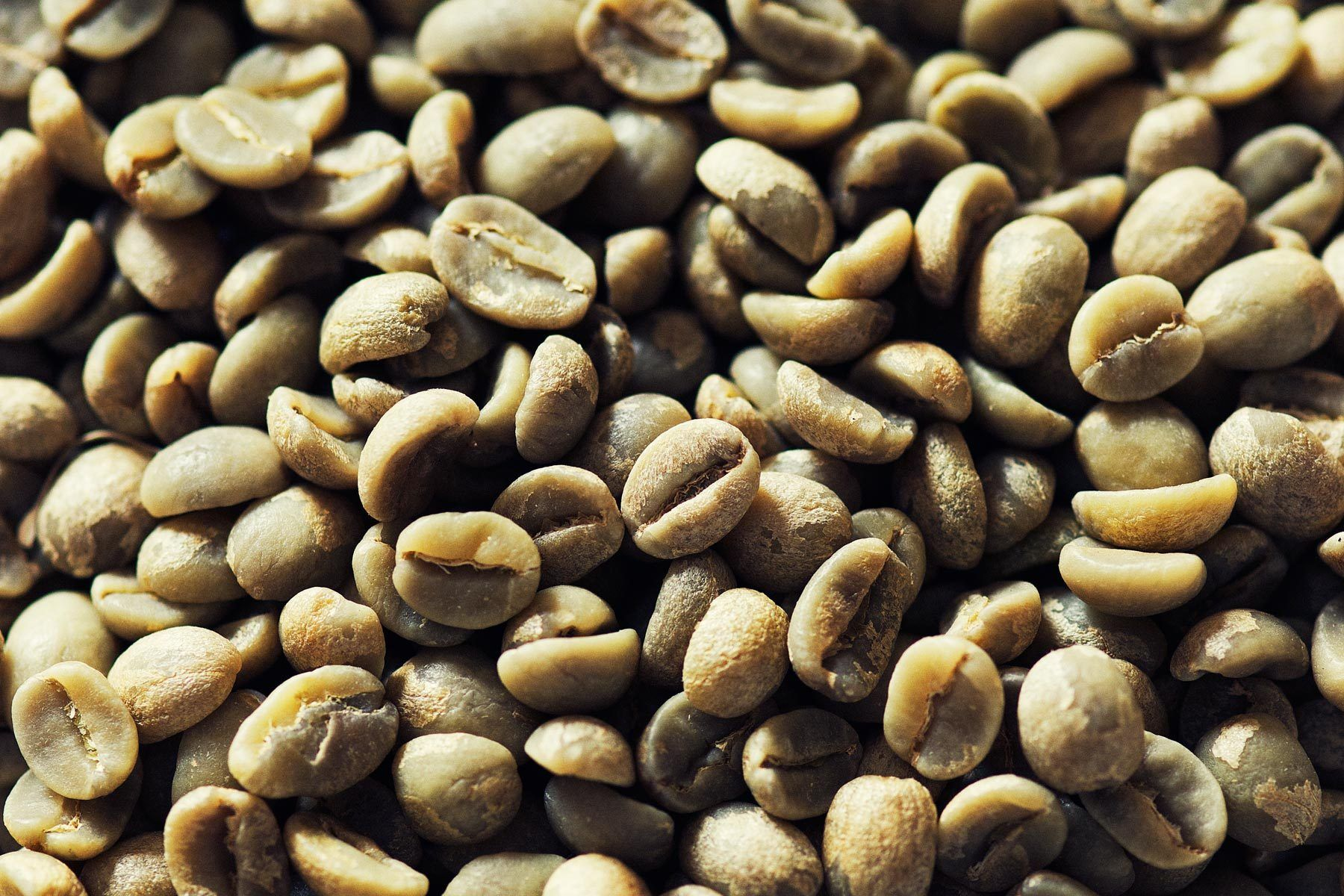 Closeup of green unroasted coffee beans unroasted
