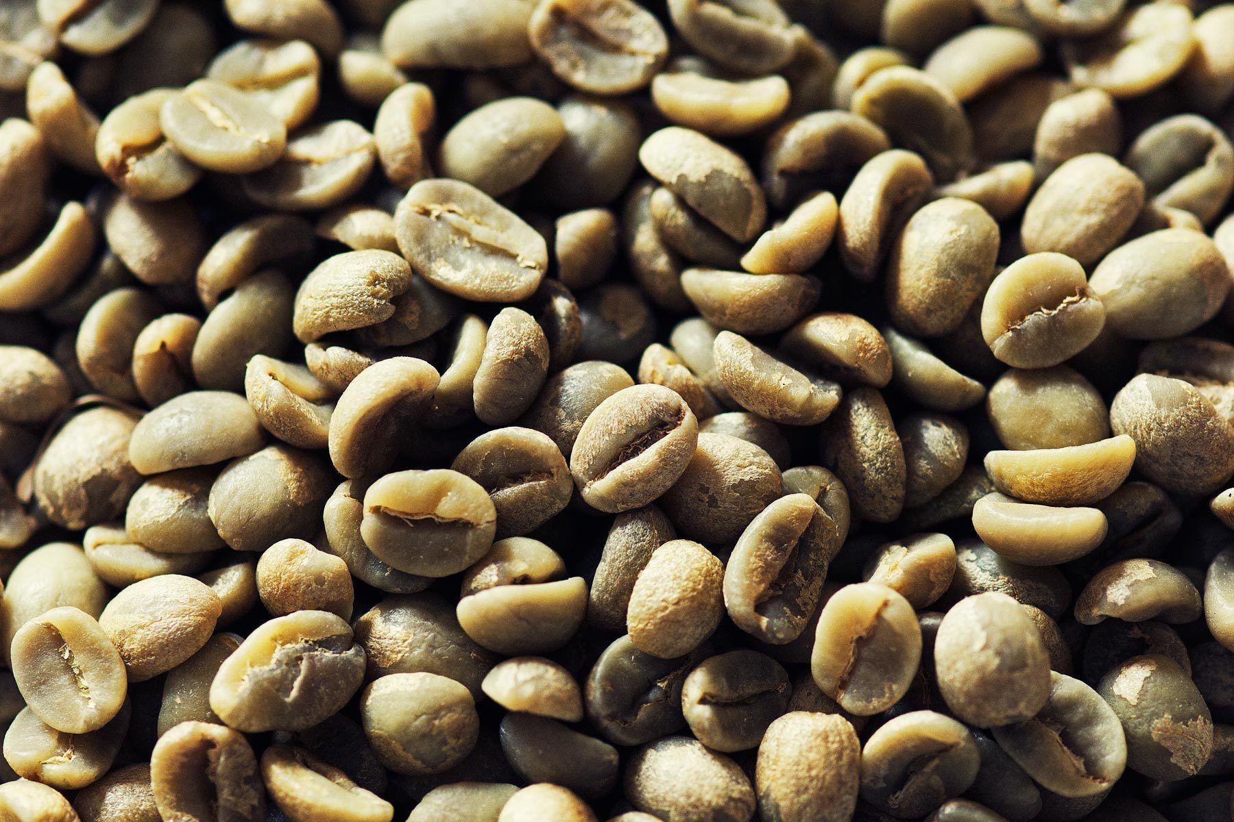 FANOS Ethiopia Tours arrange a Coffee Tour in Ethiopia