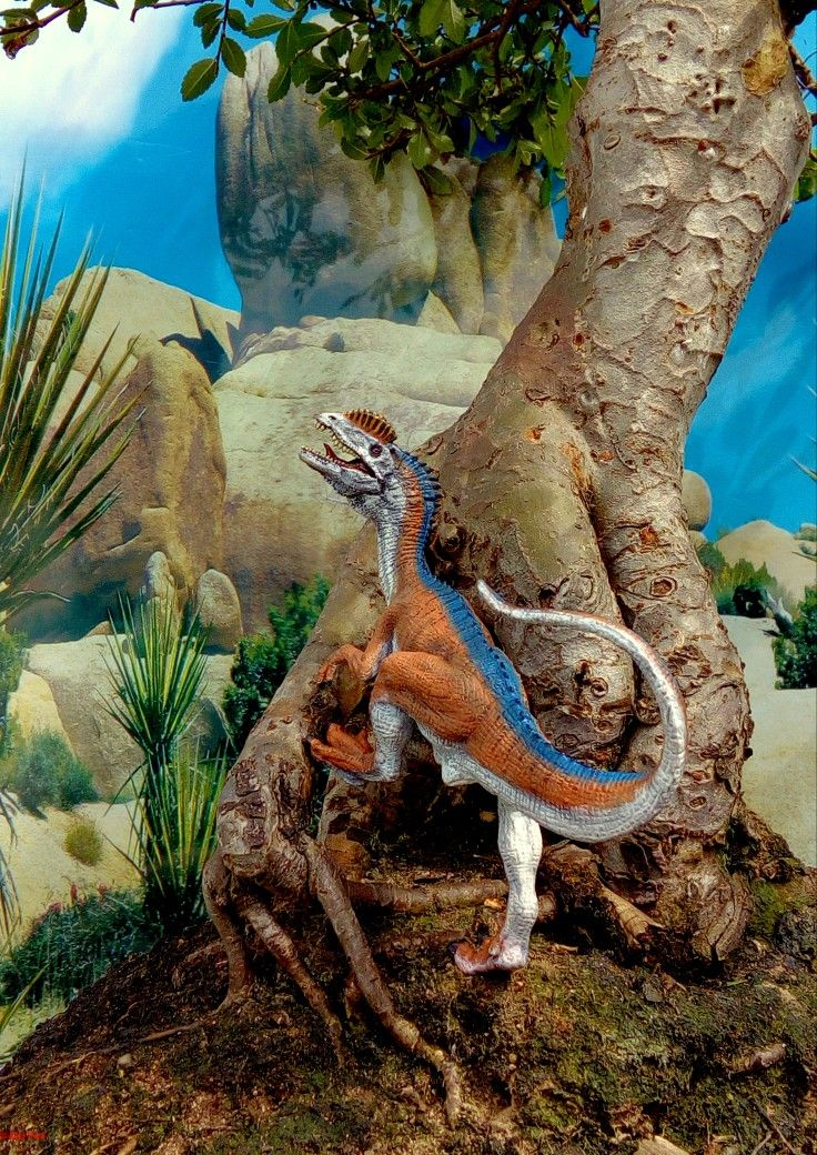 A repainted papo dilophosaurus model dinosaur in a