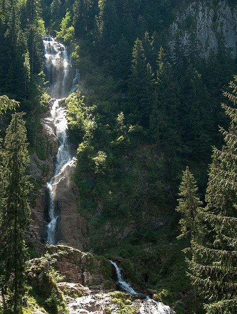 Horses waterfall  in the Carpathian Mountains, Romania. www.romaniasfriends.com