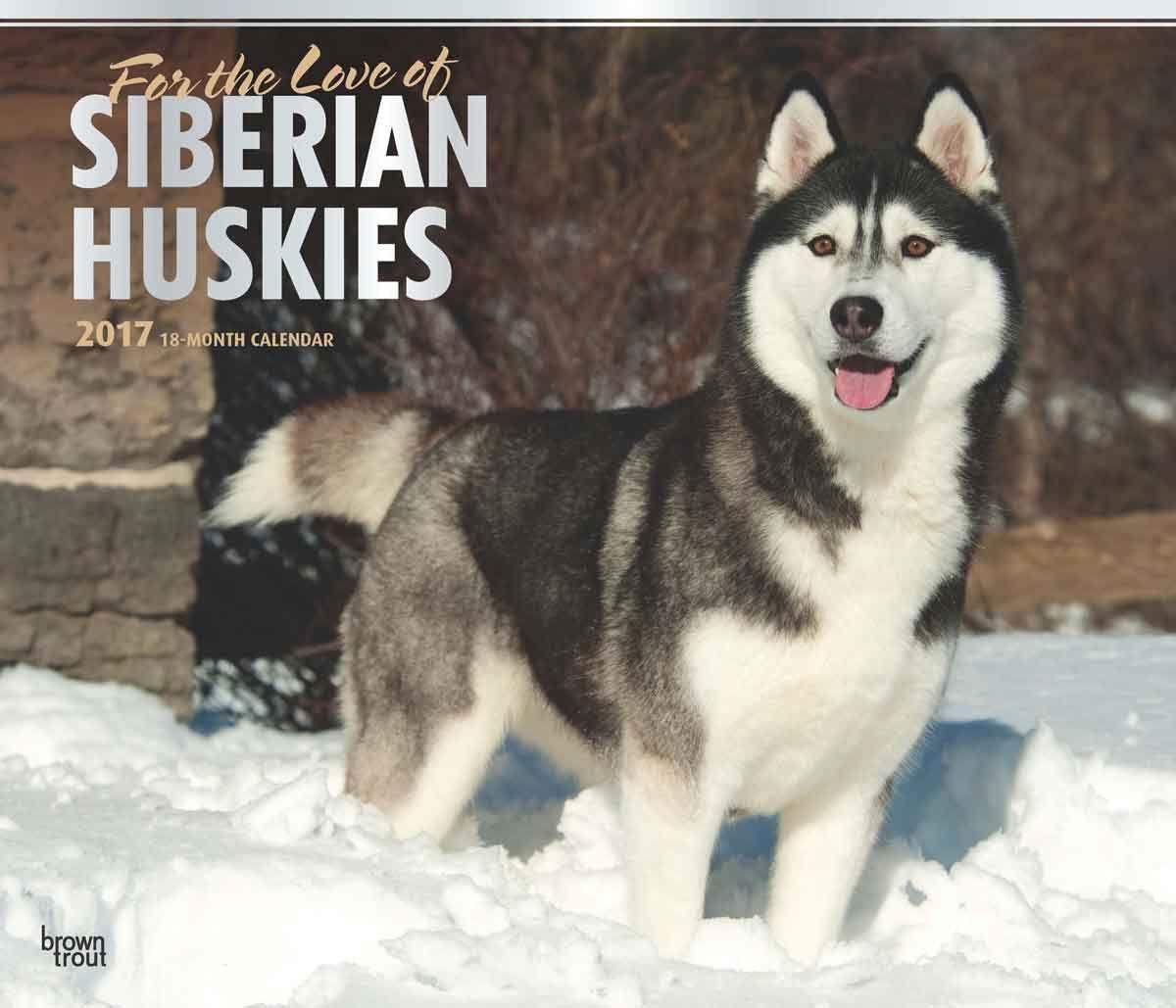 For the Love of Siberian Huskies Deluxe Calendar 2017