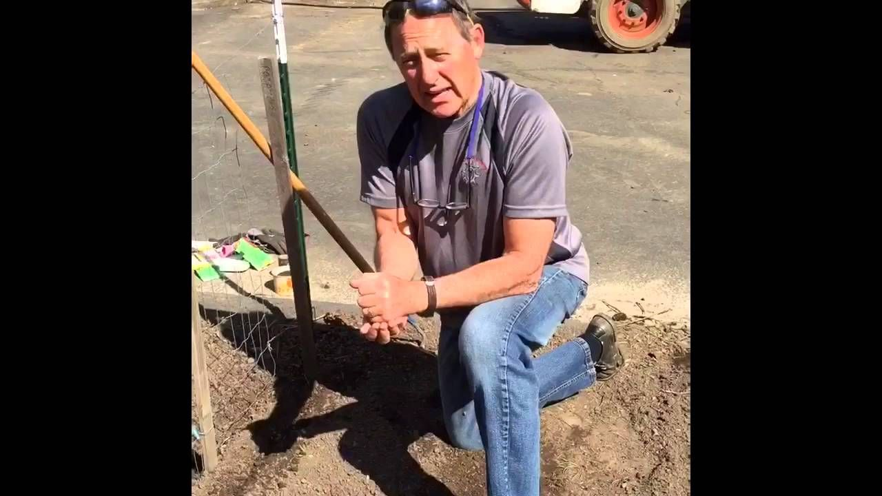 Here's a quick guide on how to use PermaMatrix BSP Foundation in your garden this spring! Yes, it really is that simple.  #spring #gardening #organic #permamatrix #foundation #sustainability #biochar #howto #livingsoil #soil #health #nutrition #growityourself #grow #terrycook #happyspring #plant #polebeans #youtube