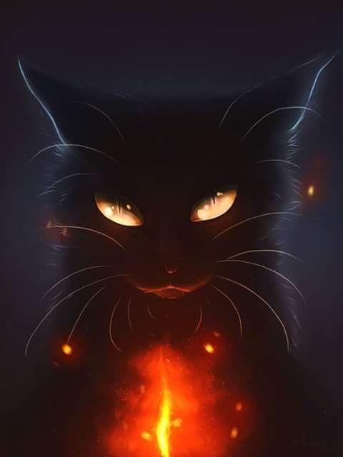 Panthro S Evil Sister Black Cat Art Cat Art Warrior Cats Art