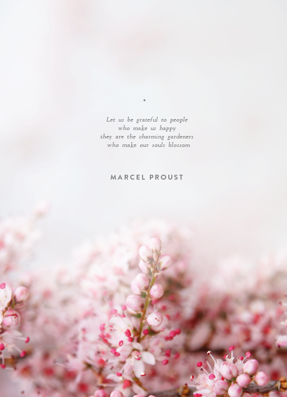 A New Era Begins Back With You Shortly Marcel Proust Blossom Quotes Inspirational Words