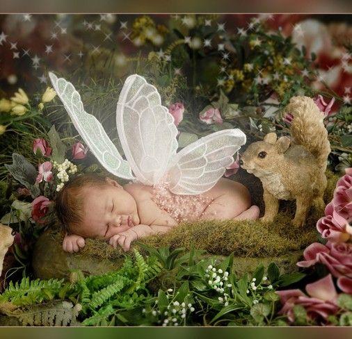Fairy - Baby Sleeping Laying Garden Squirrel. | Believe In ...