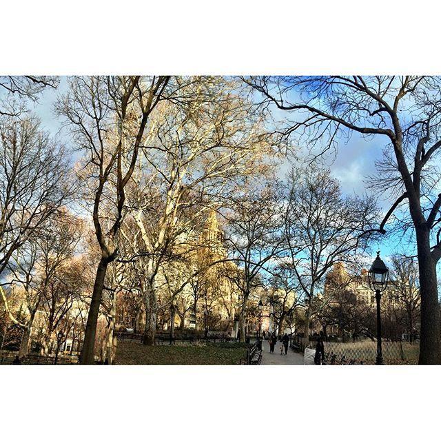 http://washingtonsquareparkerz.com/washingtonsquarepark-clouds-baretrees-nyc/   #washingtonsquarepark #clouds #baretrees #nyc
