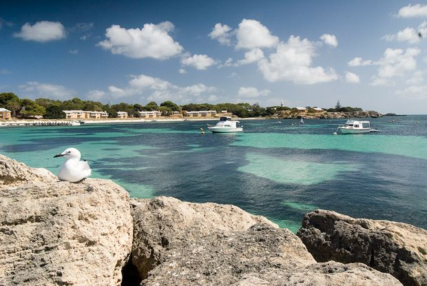 Rottnest Island Is Just A Short Ferry Ride From Perth Or Fremantle