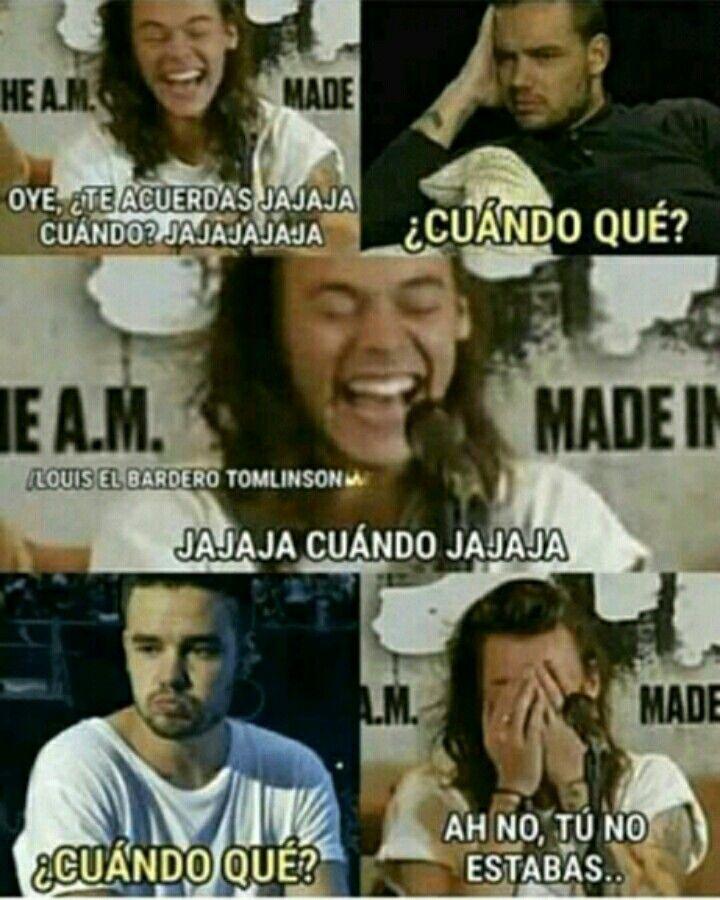 Pin De Alexa Navarro En Memes De 1d Memes De One Direction Memes Divertidos Memes De Odio