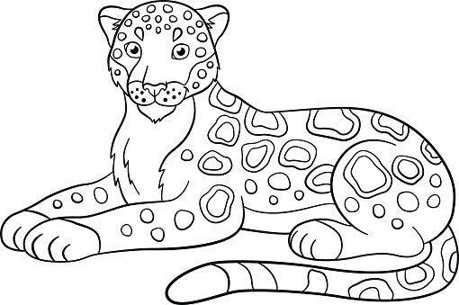 Image Result For Coloring Page Jaguar Coloring Pages Animal