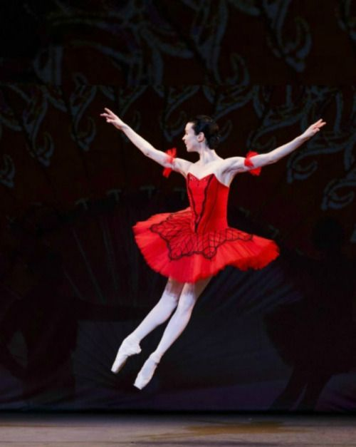 lordbyron44:  Ballerina Oleysa Novikova - Don Quixote - Photo by Tristan Fewings