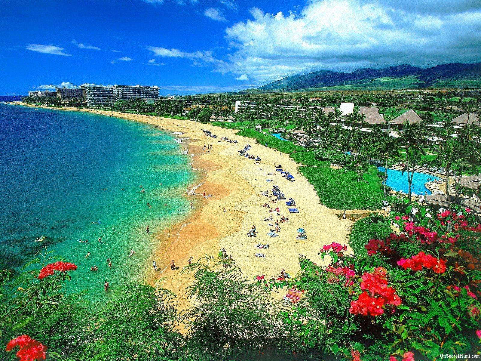 Beach Wallpaper Cool Beaches Pinterest Beach And Wallpaper - Hawaii vacation packages cheap