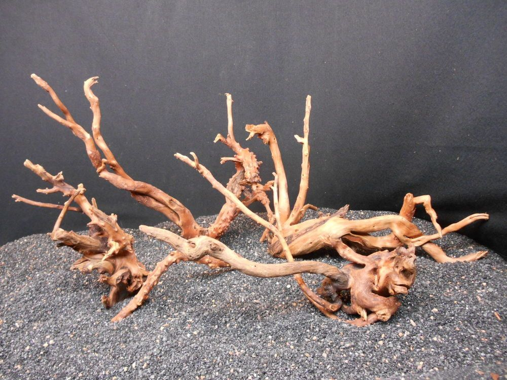 8852f82b22c995c016a893edeff10349 - How To Get Driftwood To Sink In Fish Tank
