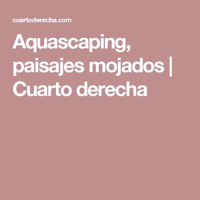 Cuarto Derecha | Aquascaping Paisajes Mojados Cuarto Derecha Pet Pinterest