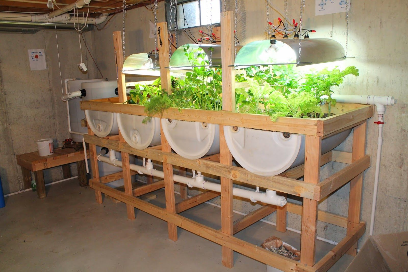 Suburban Aquaponics - Benefits of Indoor and Outdoor Gardening ...