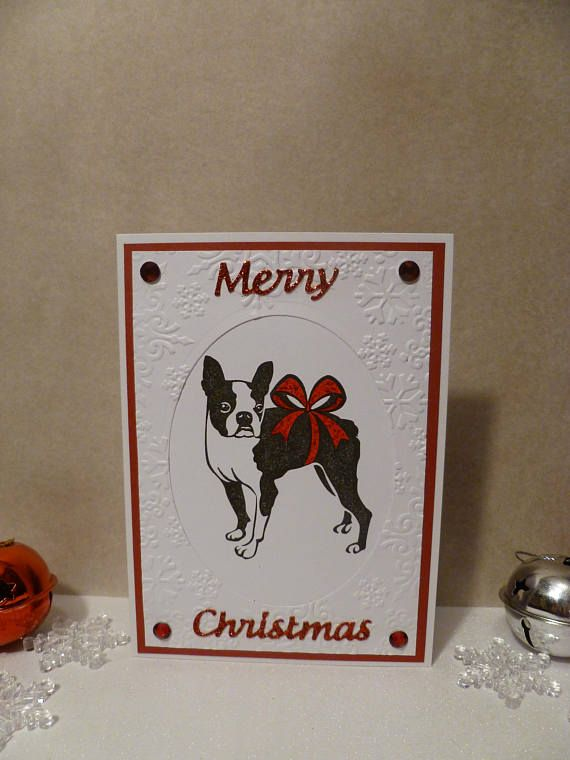 This card is for any Boston Terrier/dog lover! Show them