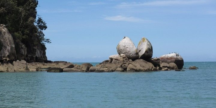 Split Apple, Abel Tasman National Park, Gold Coast, South Island, New Zealand, Oceania