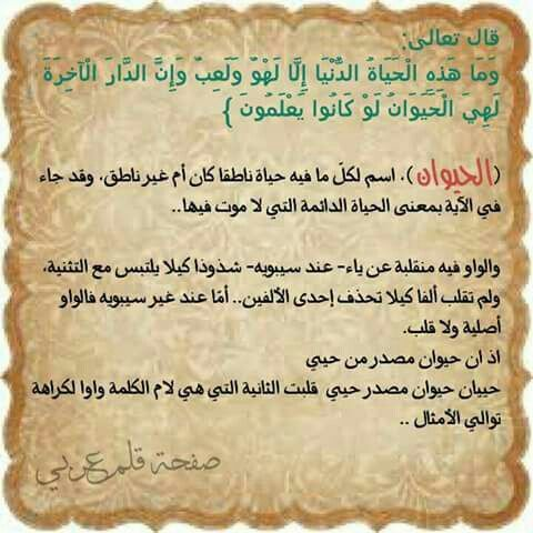 معنى كلمة الحيوان وحيوان في القرآن الكريم Arabic Calligraphy Calligraphy