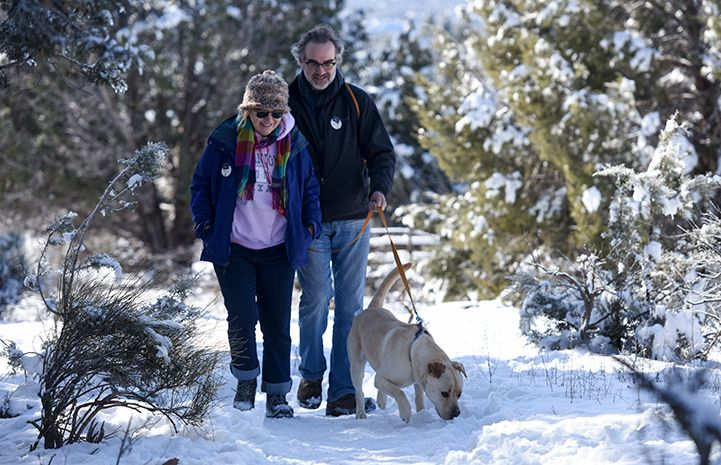 Dog Volunteer Work Leads A Los Angeles Couple To Utah Volunteer Volunteer Work Animals Beautiful