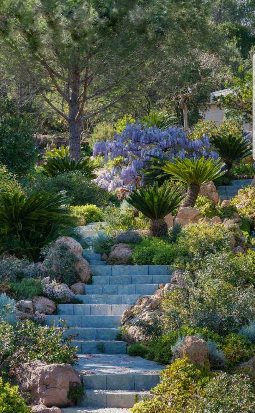 Mediterranee Mediterrane Gartengestaltung Garten Gartenprojekte
