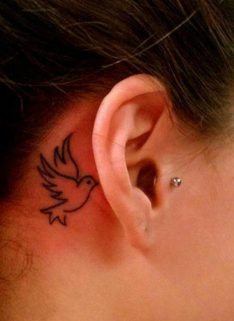 White Flying Dove Tattoo Behind Ear Styles Style Tatoverte Jenter Tatoveringer Trender