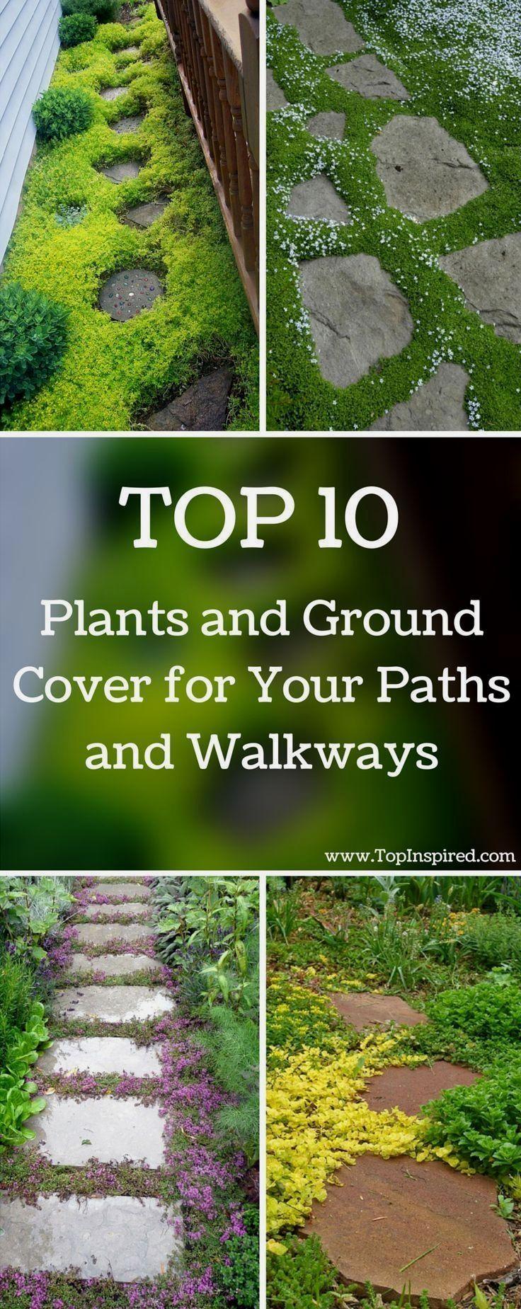 Photo of Garden Path Designs Ideas