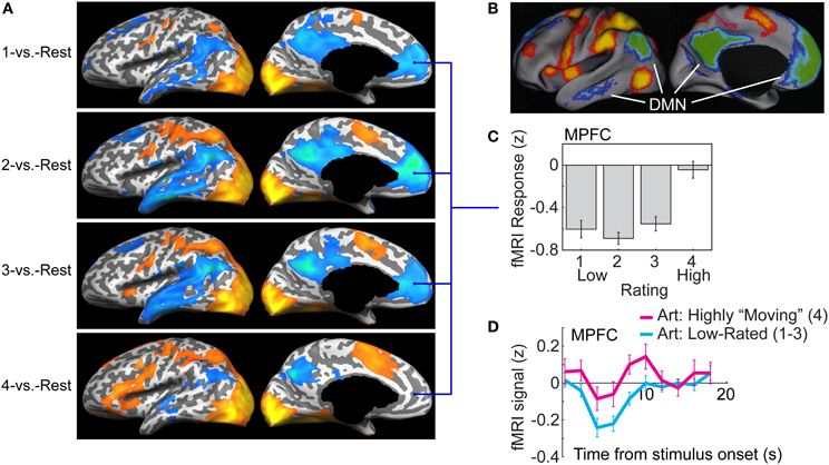Pin On Default Mode Network
