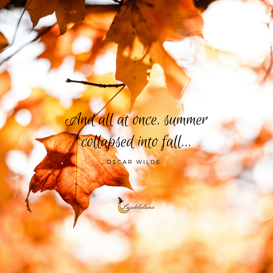 autumn quotes | Autumn | Quote of the day, Garden quotes ...
