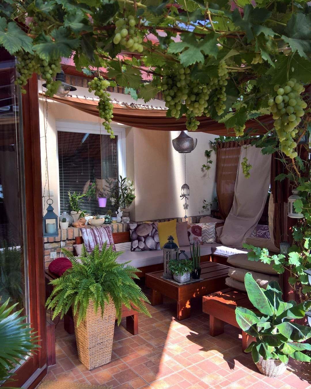 Calvin Lucas On Instagram Source Mylovelysmallgarden My Gardenroom In Jul 2018 Outdoor Decor Backyard Yard Landscaping