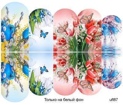 Слайдер-дизайн премиум, Цветы ufl87 - 1