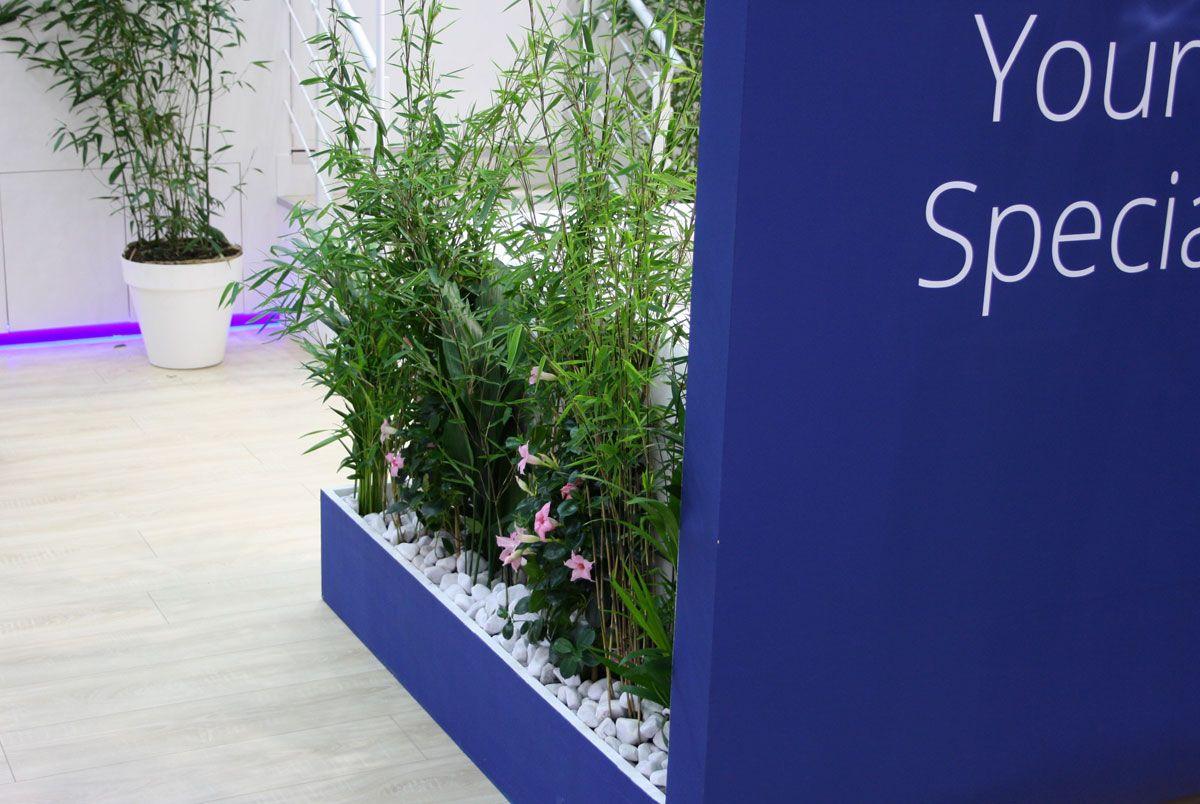 Raumteiler Hamburg raumteiler mit bambus und hibiskus messebau hamburg room divider