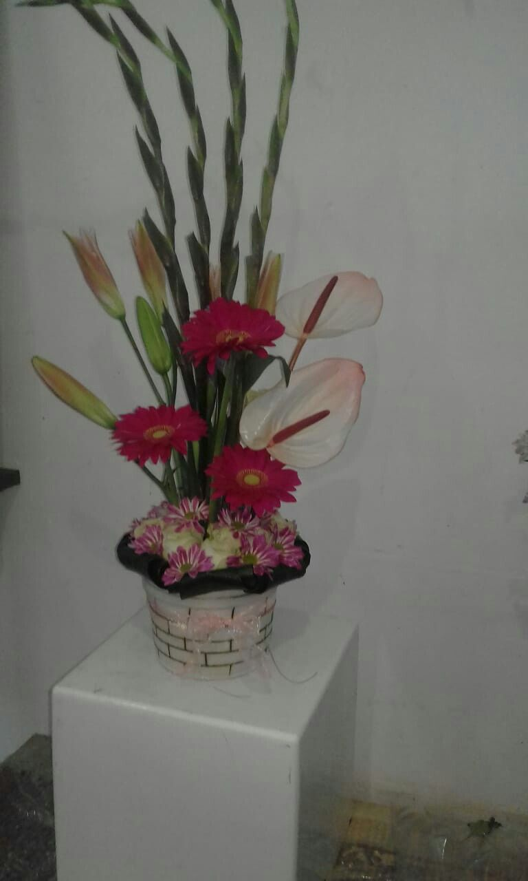 Modern Flower Arrangement With Antheriums Visit Our Online Store At Www Paddygibb Co Za Modern Flower Arrangements Flower Arrangements Floral Arrangements