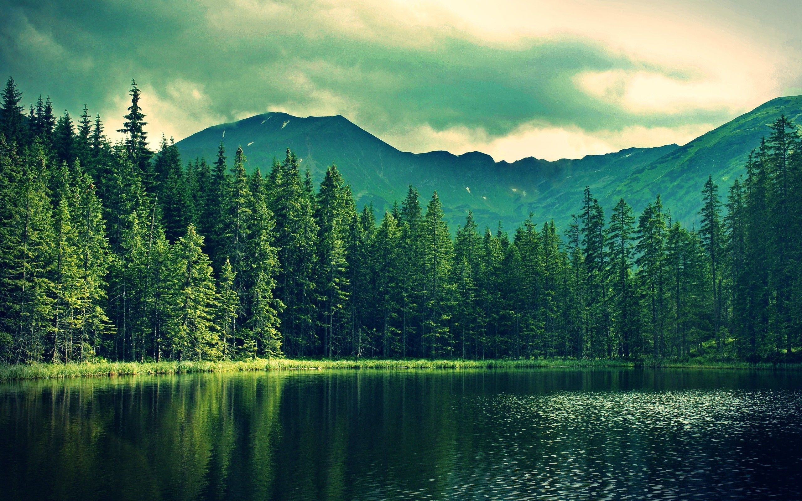 Mountains Lake Pond Water Hills Trees Landscape Nature Wallpaper Lake Landscape Forest Wallpaper Nature Wallpaper