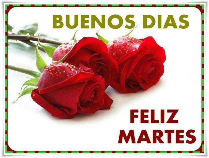 Feliz Martes Amorcito